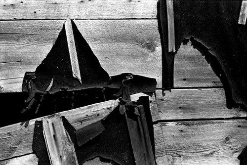 Oregon - Untitled 11 - 20x24 Inch Archival Inkjet Print - Edition 5.jpg