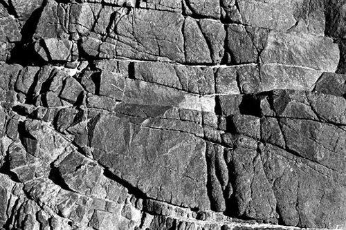 Oregon - Untitled 19 - 20x24 Inch Archival Inkjet Print - Edition 5.jpg
