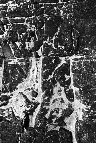 Oregon - Untitled 25 - 20x24 Inch Archival Inkjet Print - Edition 5.jpg
