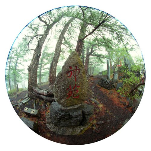 Shinto Shrine Japan-9 Inch Circle- Printed With Archival Paper And Ink-Edition 5.jpg