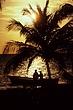 Sun Set Palm Tree Couple Boat2.jpg