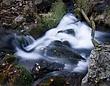 1-Cascades_0262.jpg