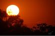 African Sun -- Soleil d Afrique.jpg