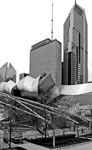 Chicago B and W webpage.jpg