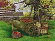 Apple Harvest (Original) 34x42.jpg