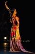 Flamenco on Stage.jpg
