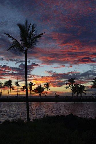 8 - Waikoloa Beach 542.jpg