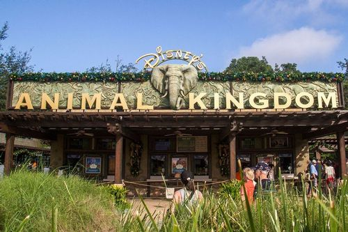 animal-kingdom_1726-64.jpg