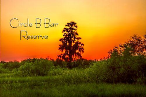 circle-b-sunset_TXT-64.jpg