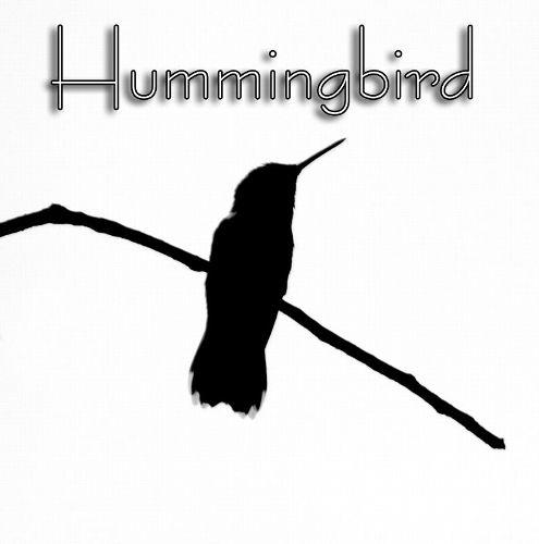 hummingbird_bw1713txt.jpg