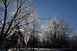 12-12-08 Ice Storm 074 Taken 12-12-08.jpg