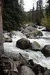 Tower Creek in Yellowstone National Park 264 Taken 6-13-09.jpg