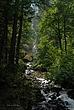 Wahkeena Falls 001 Taken 8-07-081.jpg