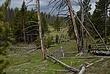 Yellowstone National Park 281 Taken 6-13-09.jpg