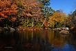 Fall Foliage Along Route 9 near Stoddard New Hampshire 215 Taken 10-10-10.jpg