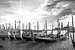 Venice Gondolas (3425).jpg