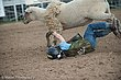 Rodeo-7691.jpg