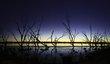 Lake Dawn.jpg
