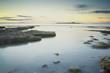 Coquet Island.jpg