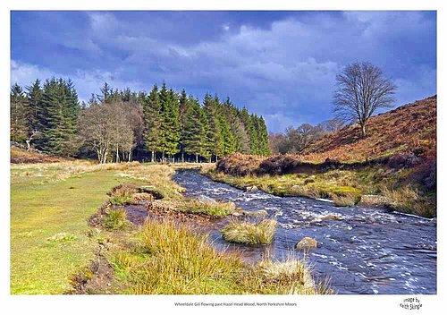 Wheeldale Gill Yorkshire Moors.jpg