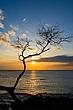 Hawaii_2102.jpg
