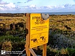 Hawaii-Volcanoes-4.jpg