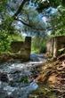 Howitt Creek HDR 2.jpg