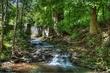 Howitt Creek HDR 3.jpg