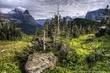Alpine Meadow.jpg