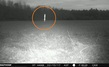 STRANGE--2-15-17 SMITHFIELD VIRGINIA--HUNTERS CAMERA--MUFON.jpg
