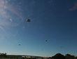 IFO--DRONES.jpg