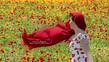 M 3 Poppy Fields-60x34 cm.jpg