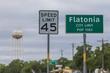 Flatonia-1.jpg