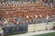 OrangeWhite2014-100.jpg