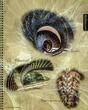 Spirals(1).jpg