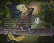 parrot-phil4-12-13.jpg