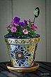flower_pot2.jpg