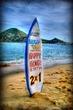 Surf board 20x30w.jpg