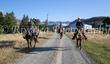 C Cavalcade 2020 - Waitangi to Awakino Station-224.jpg
