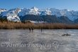 Glenorchy Lagoon frozen over.jpg