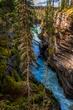 Asthabasca-Falls.jpg
