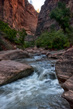 Downstream-Zion.jpg