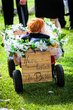 Detail-boy-in-wagon.jpg
