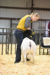 18HCD-BreedingSheep-4815.jpg
