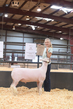 18HCD-BreedingSheep-5507.jpg