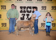 18HCD-BreedingSheep-7207.jpg