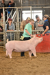 18JW-BreedingGilts-5880.jpg