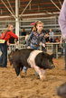 18JW-BreedingGilts-5943.jpg
