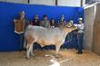 19JW-CattleBD-2914.jpg
