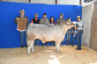 19JW-CattleBD-2916.jpg